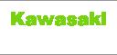 kawasaki専門店